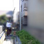 IMG_6291(ぼかし)