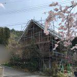 Image_2d3a76a(ぼかし)